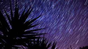 Star trails background stock video
