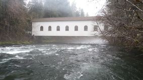 Video superiore del fiume HD di McKenzie video d archivio