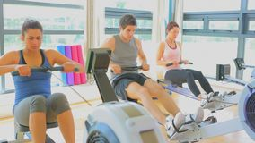 Video of three people working out on row machines Stock Images