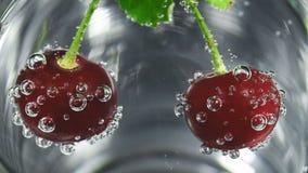 Video van rijpe kers in glas met bellen van water stock video