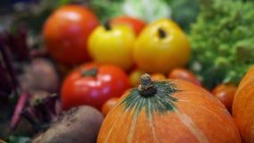 Video Verse Groenten, kleurrijke vitamine vijf en gezond voedsel stock video