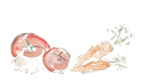 Video of Watercolor Vegetables. Tomatoes, Mushrooms and Carrots stock footage