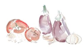 Video of Watercolor Vegetables. Tomatoes, Mushrooms, Garlic and Eggplant stock video footage