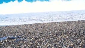 Video Wave runs on pebble beach sea shore of Haulien,Taiwan stock video footage