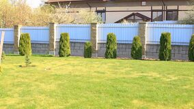 Video of a well-kept plot near the house.