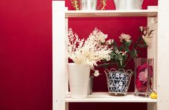White shelves with flowers on a bright red wall background stock photography