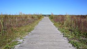 Video of the wood walkway at Sandy Point, Maine stock video footage