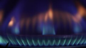 Flames Of A Gas Stove. On this video you can see as gas on the gas stove burns. Blue gas burns on a black background. Flames . Gas burners in the kitchen oven stock video