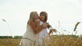 Two girls walk on the gold field of wheat in Russia. Beautiful girls in a white dress go with wheat ears in a hand. On this video you can see as the girl runs stock video