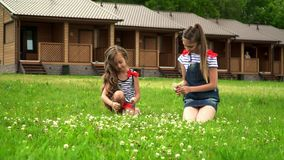 Two sisters have a rest in the park sitting on a lawn. On this video you can see as two setra sit in the park on a lawn. On a green glade in the park two stock video