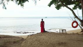 Woman in a red dress on the Tropics of Vietnam. On this video you can see as the woman in a red dress costs on the ocean coast. The woman looks in a distance stock video