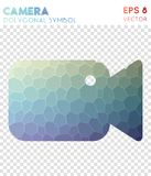 Videocam polygonal symbol. Bizarre mosaic style symbol. excellent low poly style. Modern design. videocam icon for infographics or presentation Royalty Free Stock Photography