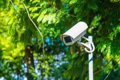 Videocamera di sicurezza del CCTV per sorveglianza in parco verde fotografie stock