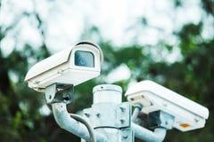 Videocamera di sicurezza in parco Immagini Stock