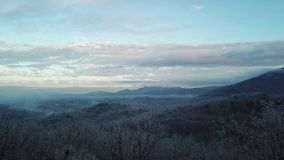 Videofliegen durch die Bäume über dem Nebel des Appalachens am frühen Morgen stock video footage