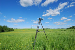 Videography of summer landscape. Videography of lone tree in green meadow with blue sky stock photo