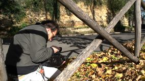 Videomaker die bladeren schieten die in de herfst SF vallen stock video