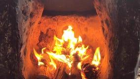 Videomaterialvedträ och brand, ljus flamma i spisen stock video