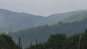 Videopan van sommige groene mistige bergen stock videobeelden