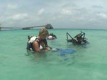 Videopn karibiskt hav för undervattens- bröllop stock video