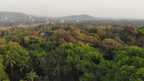 Videopp t?ta skogmassiver f?r surr inom staden av Margao i tillst?ndet av Goa india stock video