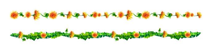 Vides florales, frontera, liana con las hojas y flores de los dientes de león Acuarela del dibujo Imagen de archivo libre de regalías