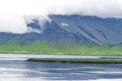 Videy Island Iceland Stock Photos