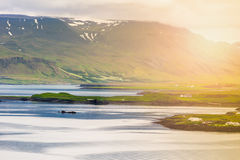 Videy Island Iceland Royalty Free Stock Photo