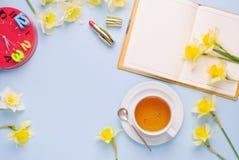 Videz la tasse ouverte de carnet de jonquilles rouges de jaune d'horloge de thé sur le fond bleu-clair Bureau fonctionnant de fem Images stock