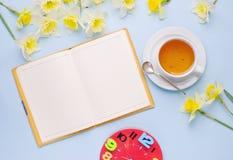 Videz la tasse ouverte de carnet de jonquilles rouges de jaune d'horloge de thé sur le fond bleu-clair Bureau fonctionnant de fem Photographie stock libre de droits