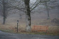 Videz le banc au parc près de l'étang par jour brumeux, scène froide minimalistic de saison banc au lac dans le brouillard dans l Photographie stock