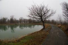 Videz le banc au parc près de l'étang par jour brumeux, scène froide minimalistic de saison banc au lac dans le brouillard dans l Photos libres de droits
