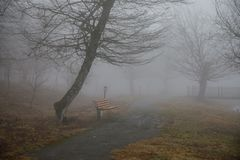 Videz le banc au parc près de l'étang par jour brumeux, scène froide minimalistic de saison banc au lac dans le brouillard dans l Photo stock