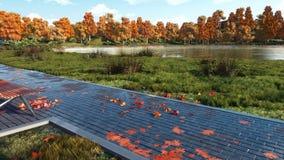 Videz le banc et les arbres colorés de chute en parc d'automne clips vidéos