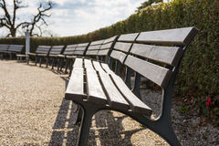 Videz le bleu Sunny Day Beauti de ciel ouvert de parc de ciel de buissons de rangée de banc Photos stock
