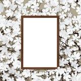 Cadre en bois et fleur Photographie stock libre de droits