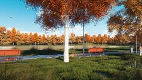 Videz les bancs et les arbres sur la voie en parc d'automne banque de vidéos