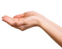 Videz les mains ouvertes de femme d'isolement Images stock