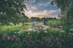 videz les prés colorés dans la campagne avec des fleurs dans le premier plan photo libre de droits