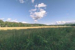 videz les prés colorés dans la campagne avec des fleurs dans le premier plan image stock