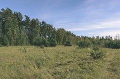 videz les prés colorés dans la campagne avec des fleurs dans le premier plan photographie stock libre de droits