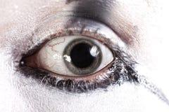 vidgade ögonhumanelever Arkivbilder