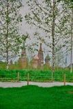 Vidoeiro no fundo do Kremlin de Moscou fotos de stock