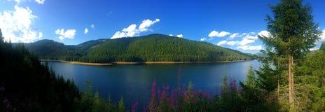 Vidra sjö, Carpathians Montains, Rumänien royaltyfria foton