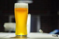 Vidrio alto de cerveza ligera en una cervecería fotos de archivo libres de regalías
