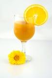 Vidrio anaranjado del néctar Fotografía de archivo