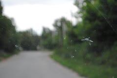 Vidrio auto defectuoso foto de archivo libre de regalías