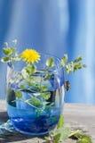 Vidrio azul y una huésped Imágenes de archivo libres de regalías