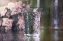 Vidrio chispeante de agua Imágenes de archivo libres de regalías
