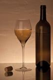 Vidrio con el vino blanco Fotos de archivo libres de regalías